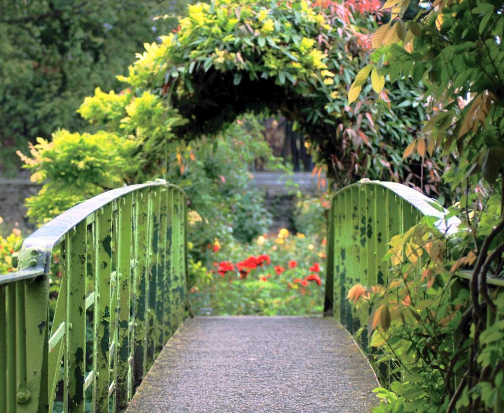 Lovely National Botanic Garden